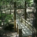 This Bridge was built using funds raised through StoneSteps50K